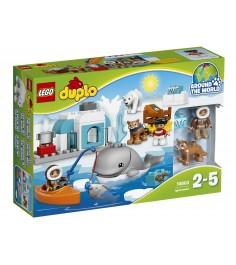 Lego Duplo вокруг света арктика 10803