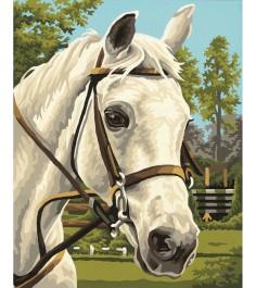 Schipper Белая лошадь 9240394