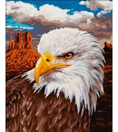 Schipper Белоголовый орлан 9240665
