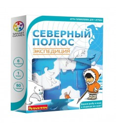 Логическая игра северный полюс экспедиция Bondibon ВВ1881