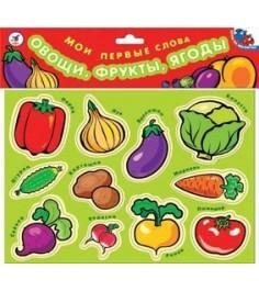 Магнит Дрофа мои первые слова овощи фрукты ягоды 1318