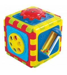 Развивающая игрушка PlayGo Куб 6 в 1 Play 2141