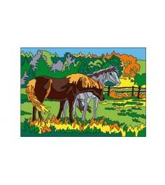 Раскраска песком лошади а3 Рыжий кот р-8888