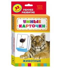 Развивающие карточки животные Росмэн 20991