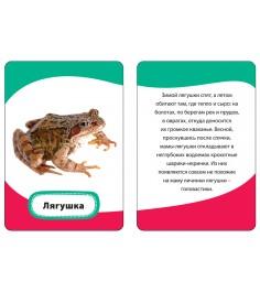 Мамы и малыши Развивающие карточки 3 Умные карточки Росмэн 21004