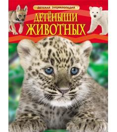 Детеныши животных Росмэн 22213