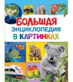 Большая энциклопедия в картинках Росмэн 27861